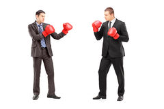 Dos hombres de negocios que tienen una lucha con los guantes de boxeo Foto de archivo