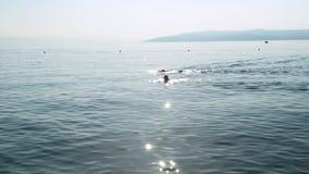 Dos hombres nadan a lo largo de la costa en la puesta del sol almacen de metraje de vídeo
