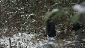 Dos hombres que corren a través del bosque Cámara lenta almacen de metraje de vídeo