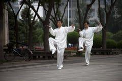 Dos hombres que juegan Taijiquan Imágenes de archivo libres de regalías