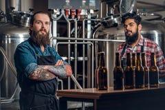 Dos hombres que presentan la cerveza del arte en el microbrewery Foto de archivo