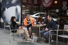 Dos hombres y una mujer morena con el pelo largo con un perro se están sentando en un café y hablar de la calle Imágenes de archivo libres de regalías