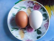 Dos huevos Fotografía de archivo