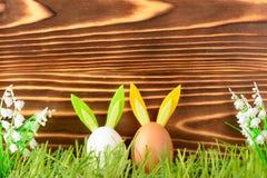 Dos huevos con los oídos decorativos del conejito Fotografía de archivo