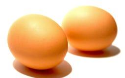 Dos huevos de Brown Fotografía de archivo