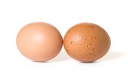 Dos huevos de Brown fotografía de archivo libre de regalías