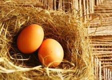 Dos huevos de oro Fotografía de archivo