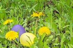 Dos huevos de Pascua en la hierba verde, primer Foto de archivo libre de regalías