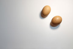 Dos huevos en el fondo blanco Imagen de archivo