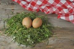 Dos huevos frescos Imagen de archivo