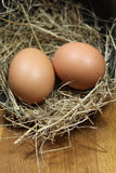 Huevos frescos imágenes de archivo libres de regalías