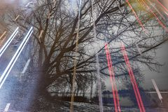 Dos imágenes sobrepuestas en uno a exposición doble camino del coche y un árbol grande Fotografía de archivo