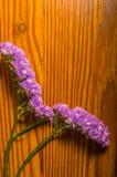 Flores púrpuras en un fondo de madera decorativo Imagenes de archivo