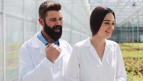 Dos investigadores en trajes del laboratorio caminan alrededor del invernadero Discuten el éxito de hacer negocio almacen de metraje de vídeo