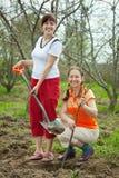 Dos jardineros de sexo femenino que plantan el árbol foto de archivo libre de regalías