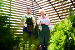 Dos jardineros en invernadero botánico fotos de archivo