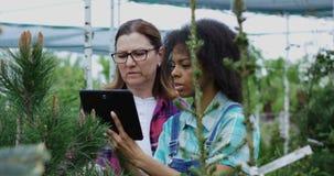 Dos jardineros que usan la tableta en jardín del cuarto de niños almacen de metraje de vídeo