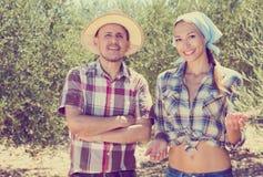 Dos jardineros sonrientes que se unen entre los olivos imagen de archivo