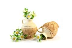 Dos jarros con las flores Imágenes de archivo libres de regalías