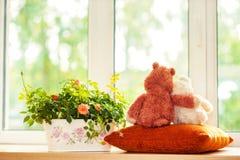 Dos juguetes del oso de peluche del abarcamiento que se sientan en ventana-travesaño Imagen de archivo libre de regalías