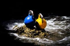 Dos Kettlebells en el agua Foto de archivo