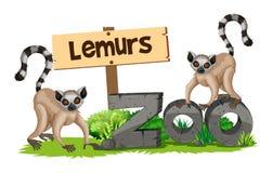 Dos lémures en el parque zoológico ilustración del vector