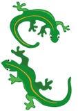 Dos lagartos Imagenes de archivo