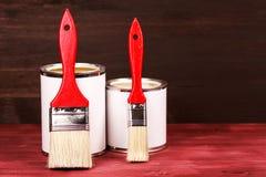 Dos latas de la pintura con los cepillos Fotografía de archivo
