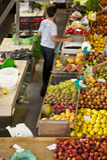 DOS Lavradores di Mercado sul Madera Fotografie Stock Libere da Diritti
