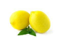 Dos limones amarillos grandes Imagen de archivo