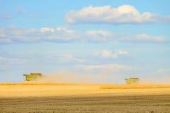 Dos máquinas segadoras están funcionando en la cosecha en el campo Fotos de archivo
