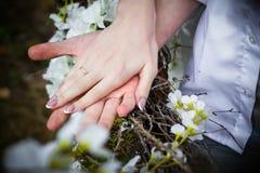 Dos manos con los anillos Foto de archivo libre de regalías