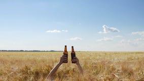Dos manos de la gente con las botellas de cerveza en el medio de la cebada colocan almacen de video