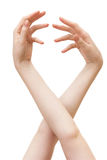 Dos manos de la mujer elegante Imagen de archivo libre de regalías