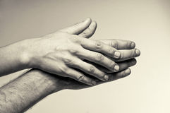 Dos manos - dulzura Fotografía de archivo libre de regalías