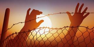 Dos manos migratorias estiran al alambre de púas stock de ilustración