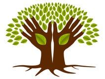 Dos manos ponen verde el árbol Imágenes de archivo libres de regalías