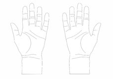 Dos manos se abren Imagen de archivo libre de regalías