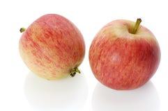 Dos manzanas Imagen de archivo libre de regalías