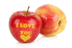 Dos manzanas maduras con los troncos Fotografía de archivo