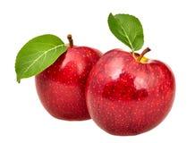 Dos manzanas rojas Foto de archivo