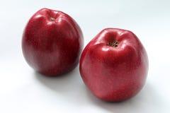 Dos manzanas rojas Fotos de archivo
