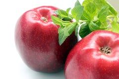 Dos manzanas rojas Imagenes de archivo