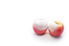 Dos manzanas rojas en un fondo aislado Fotos de archivo libres de regalías