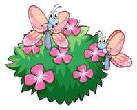 Dos mariposas cerca de la planta con las flores rosadas Fotos de archivo libres de regalías