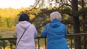 Dos mayores femeninos que colocan la cerca cercana y que miran el lago en el parque, visión trasera almacen de metraje de vídeo