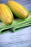 Dos mazorcas de maíz Foto de archivo libre de regalías