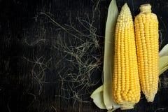Dos mazorcas de maíz en una tabla de madera negra fotos de archivo