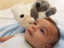 Dos meses de bebé con el juguete de la koala Foto de archivo