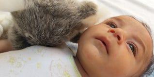 Dos meses de bebé con el juguete de la koala Foto de archivo libre de regalías